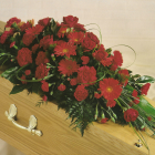 Red Gerbera Coffin Spray A5. 3ft - £120, 4ft £160, 5ft £200, 6ft £240